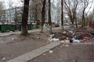 В Брянске больше года не могут убрать свинарник по улице Орловской