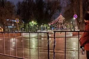В Брянске оградили забором ёлку в Круглом сквере