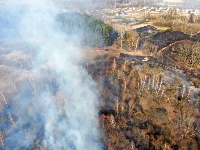 За год на Брянщине лесопожарные беспилотники совершили 72 вылета