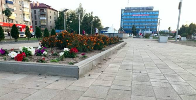 Благоустройство по-брянски: вопросы к ремонту сквера Литий