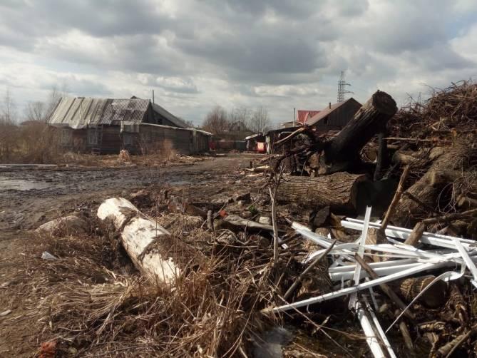 В Брянске окраина Володарского района превратилась в свалку