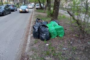 В Брянске забыли вывезти собранный на субботнике мусор