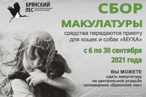 В заповеднике «Брянский лес» соберут деньги для приюта бездомных животных