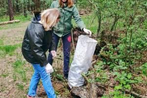 В Погаре активисты убрали мусор в лесу после отдыха «шашлычников»