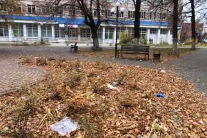В Клинцах Центральный сквер утонул в мусоре