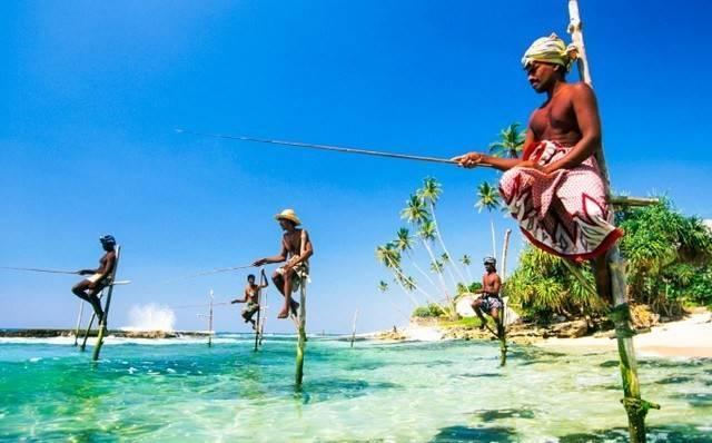 В Брянской области нелегалам из Шри-Ланки дали два года колонии