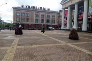 В Брянске на площади перед драмтеатром поселились цветочные балерины