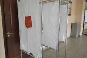 На выборах в Брянской области пока лидирует «Единая Россия»
