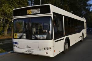 Брянску закупят 32 новых автобуса по 9 миллионов рублей