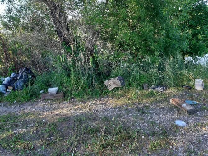 В Дятьковском районе устроили свалку возле озера Пильня