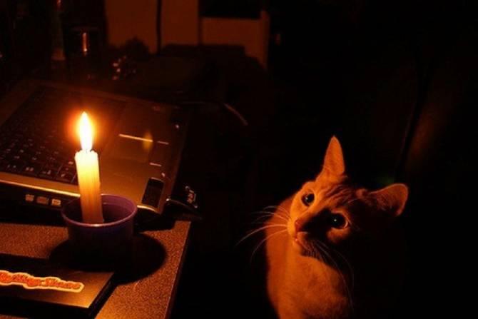 Жители Бежицкого района Брянска остались без света