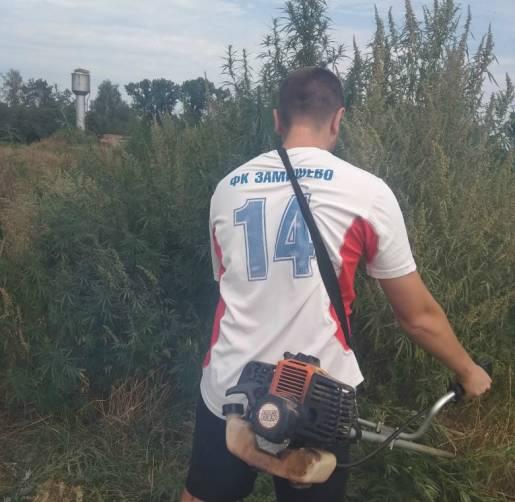Брянские футболисты одержали победу на поле конопли