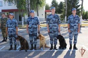На Брянщине служебные собаки помогли кинологам найти 6 кг взрывчатки