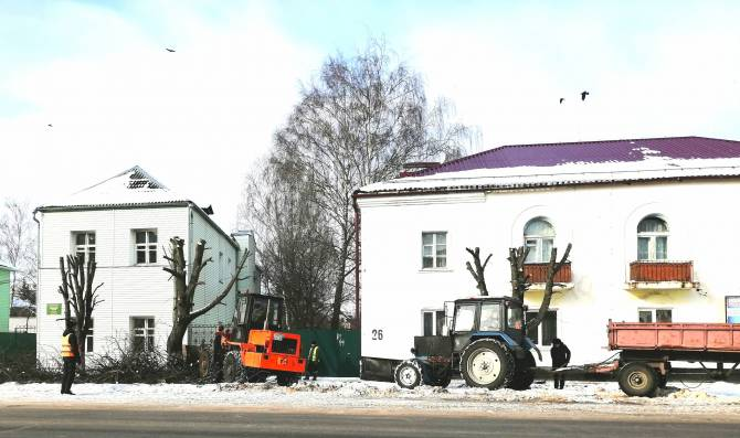 В центре Новозыбкова варварски обкромсали деревья