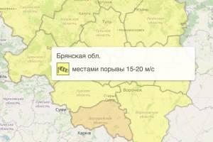 На Брянщине из-за ветра объявили «жёлтый» уровень опасности