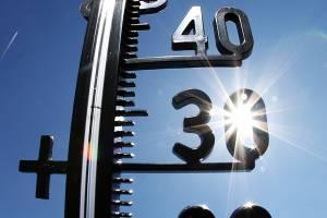 Придет аномальная жара в Брянскую область