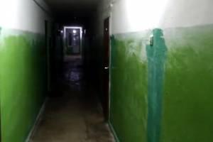 В Белых Берегах жильцы общежития пожаловались на некачественный ремонт