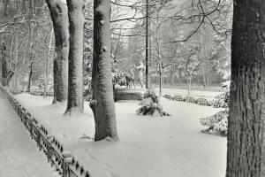 Брянцы восхитились фото зимней улицы Куйбышева из 1987 года