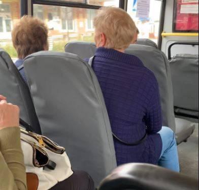 Пассажиров автобуса в Клинцах перепугали контролеры без масок