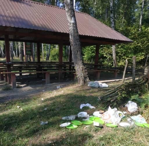 В Брасовском районе на кордоне лесника отдыхающие устроили свинарник