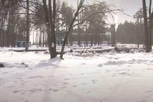 В Клинцах бюджетников просят подписаться за боксерский центр в парке