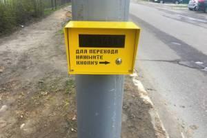 В Брянске увеличат количество светофоров с кнопками