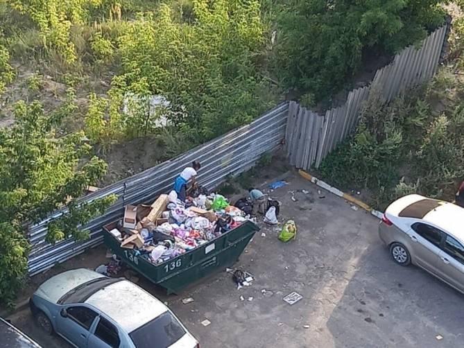 В Брянске копающиеся в мусоре бомжи захламили двор многоэтажки