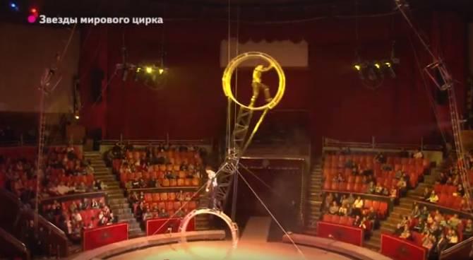 Брянцам пообещали скидку на билеты в цирк по кодовой фразе