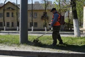 В Брянск постригли 175 тысяч квадратных метров газонов