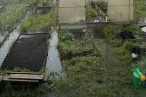Центр Клинцов потребовали очистить от потопа канализацией