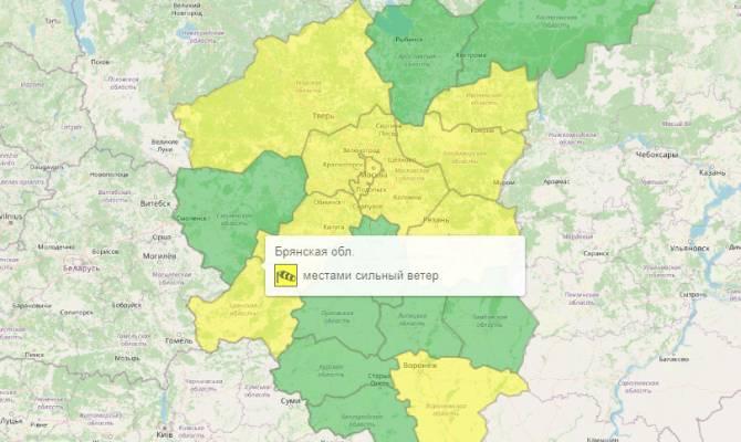 В Брянской области из-за сильного ветра введут желтый уровень погодной опасности