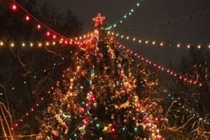 В Брянске главную новогоднюю ёлку украсят в ретро-стиле