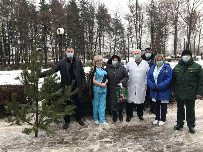 Дубровская и Рогнединская больницы получили новогодние елочки