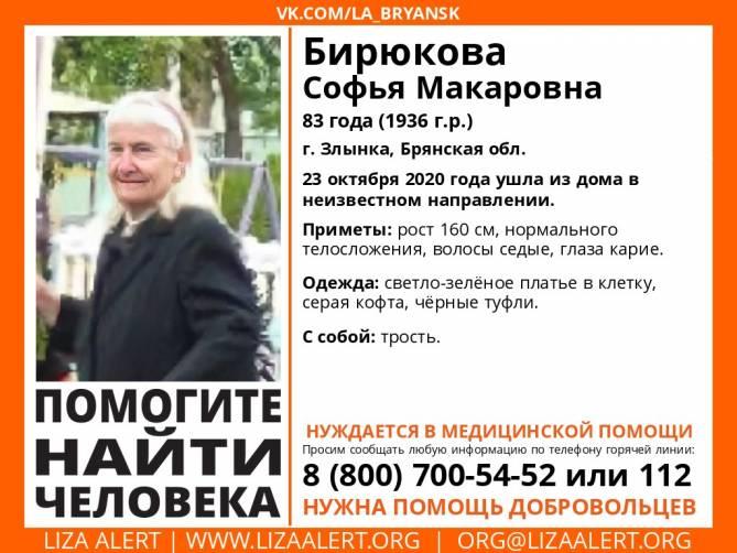 В Злынке потерялась 83-летняя Софья Бирюкова