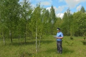 В Навлинском районе владельца заросших участков оштрафовали на 40 тысяч рублей