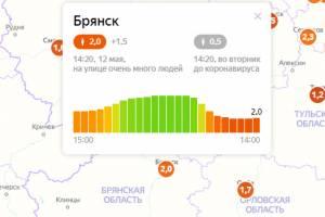 В Брянске рекордно упал индекс самоизоляции