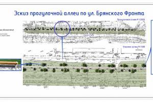 Брянцам показали дизайн-проект Липовой аллеи