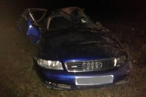 Под Погаром водитель Audi вылетел в кювет и убил 39-летнего пассажира