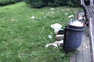 В Брянске район Площади Партизан завалили мусором