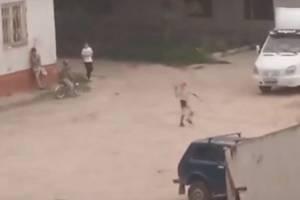 В Дятьково юные хулиганы забросали камнями сторожа котельной