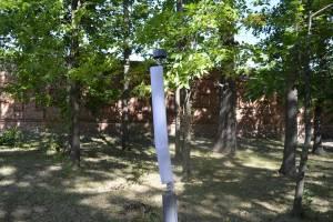 В Новозыбкове неизвестные разбили антивандальные фонари в парке