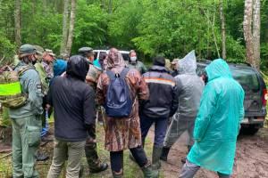 В Климово пропавшего грибника ищут больше 30 человек