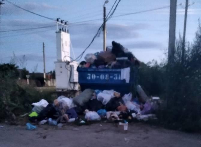 В Добруни сняли на фото мусорный апокалипсис