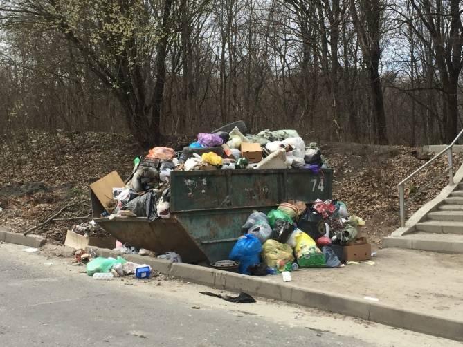 В Брянске 10-й микрорайон утонул в зловонных помоях