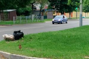 В Брянске чиновники превратили в свалку улицу Пересвета