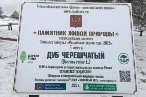 На Брянщине открыли памятный знак у Партизанского дуба