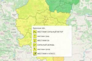 В Брянской области продлили желтый уровень погодной опасности