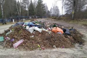 В Дарковичах на кладбище нашли незаконную свалку