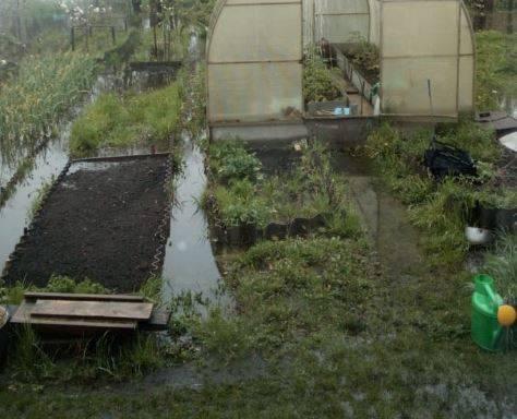 В Клинцах канализация затопила центр города