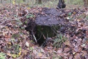 Поисковики нашли в брянских лесах сохранившийся с войны ДОТ